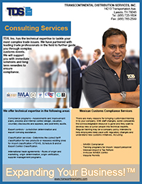 Consulting Services TDS